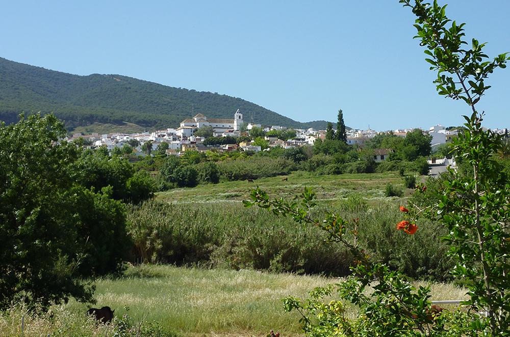 B&B holiday in Andalusia in Alhaurin el Grande near Málaga