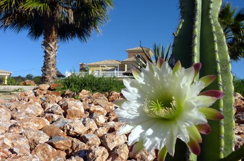 luxe-b&b-genieten-in-Andalusië